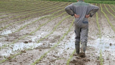 La revalorisation des retraites agricoles ne peut pas attendre !